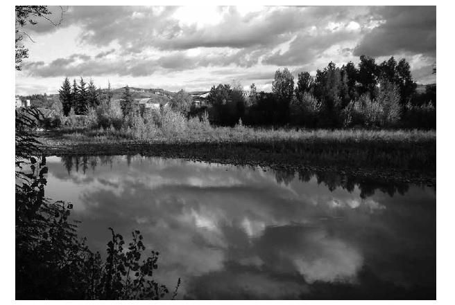 fiume panaro